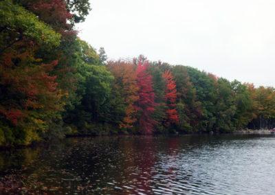 Wilson-lake-Fall