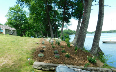 Vegetated Buffers: Do-It-Yourself Conservation Practices