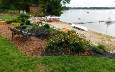 Province Lake Buffer Project Updates