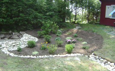 Rain Gardens: Do-It-Yourself Conservation Practices