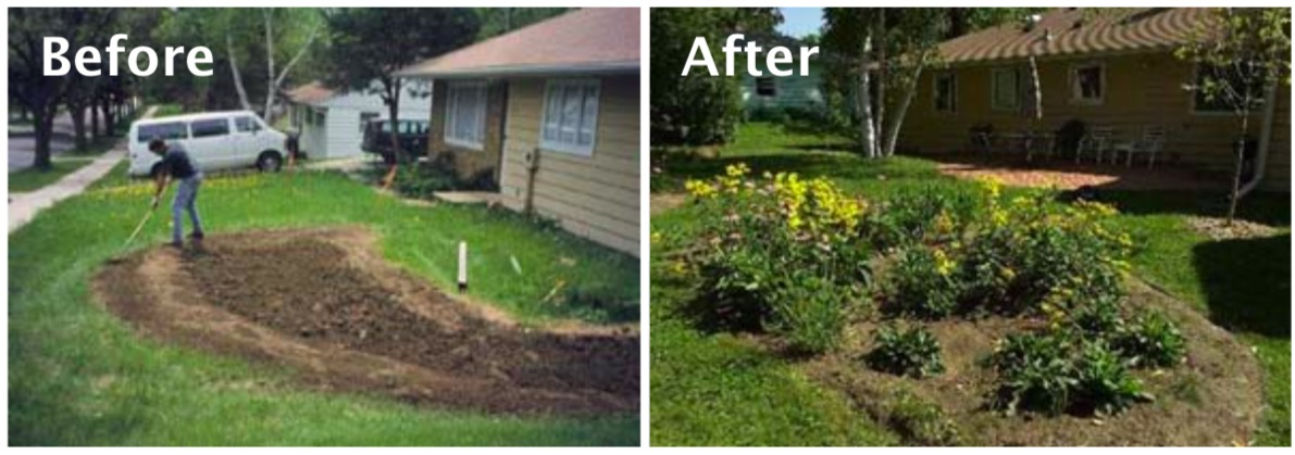 Rain Gardens: Do-It-Yourself Conservation Practices - Acton